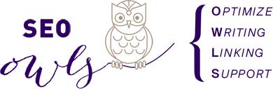 SEO OWL logo
